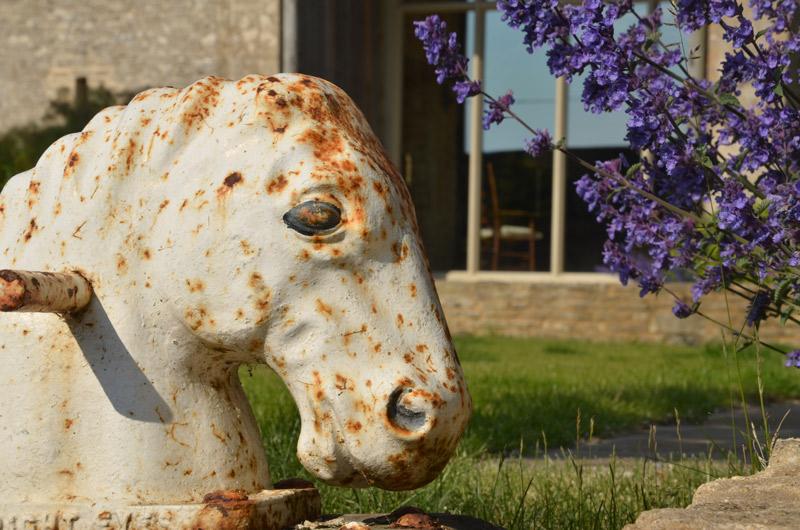 013_horsedetail